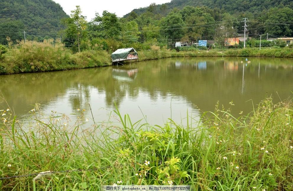 培养鱼苗施用肥水肥有机鱼肥技术