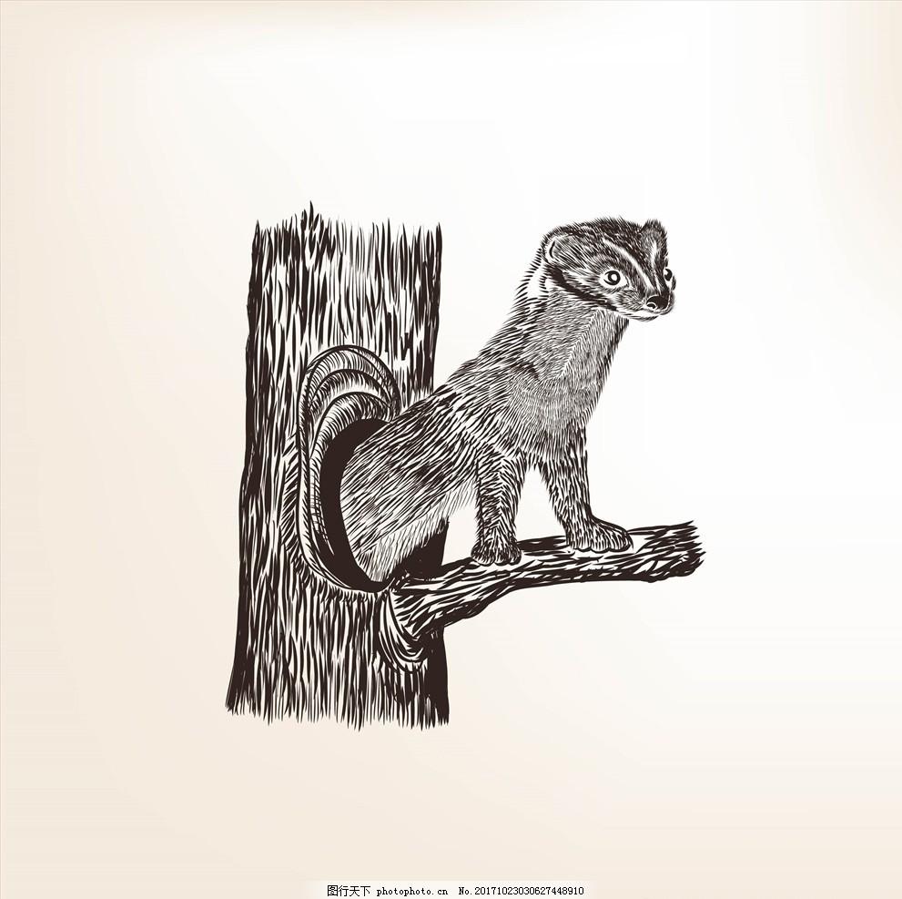 手绘线描黑白动物矢量图