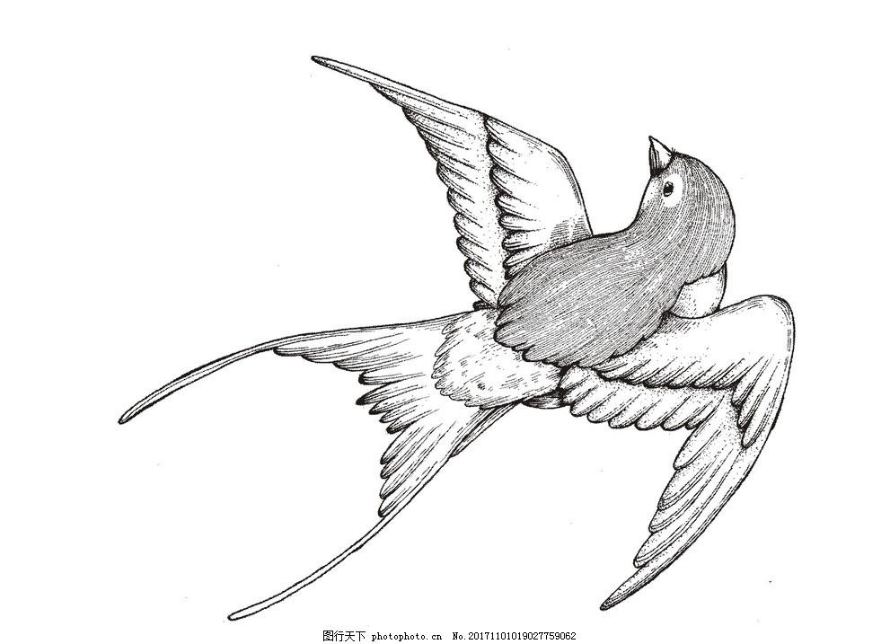 燕子 动物 手绘 简笔画 飞翔 鸟类