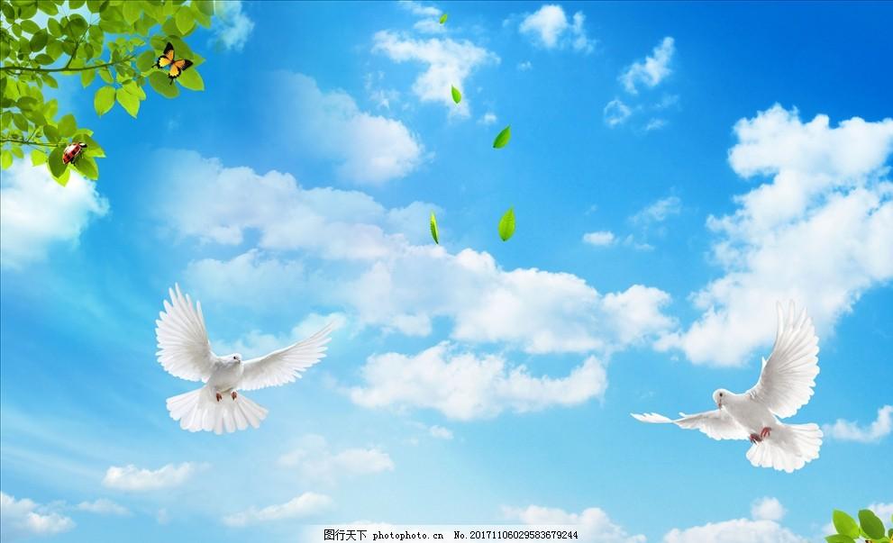 蓝天白鸽 树叶 蝴蝶 七星瓢虫 广告设计