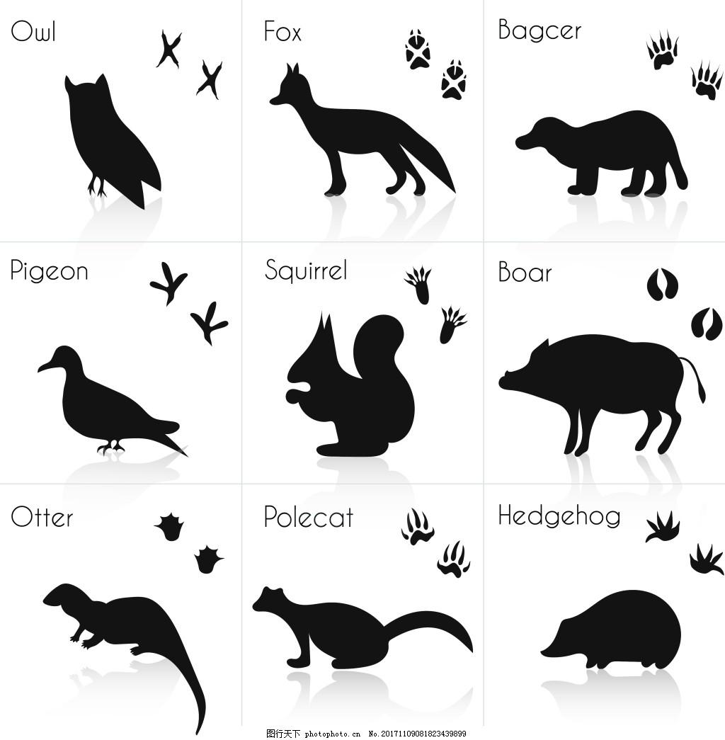 黑白动物和脚印插画 卡通 剪影 鸭子 松鼠 可爱