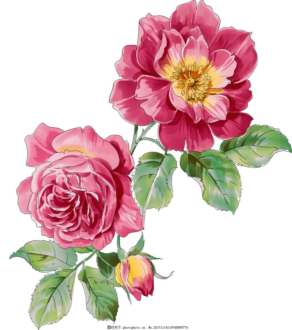 美丽蔷薇花png透明素材 粉红色 花苞 绿叶 花茎 透明素材 免扣素材