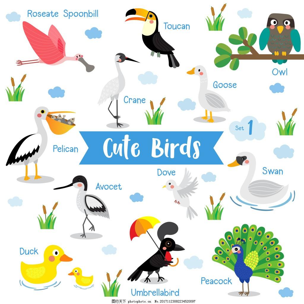 可爱鸟类主题动物儿童插画