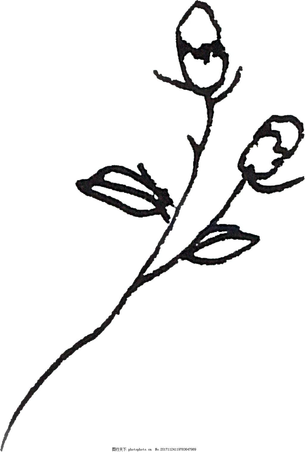 简单铅笔画花卉水彩透明素材 卡通 免扣 手绘 装饰 设计素材 淘宝素材