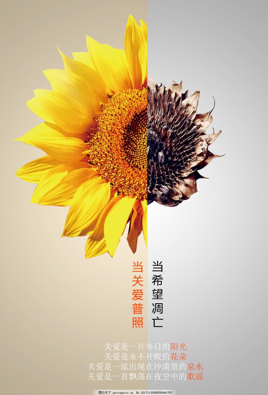 公益宣传海报设计psd模板 花朵 黄色 灰色 简约 公益组织