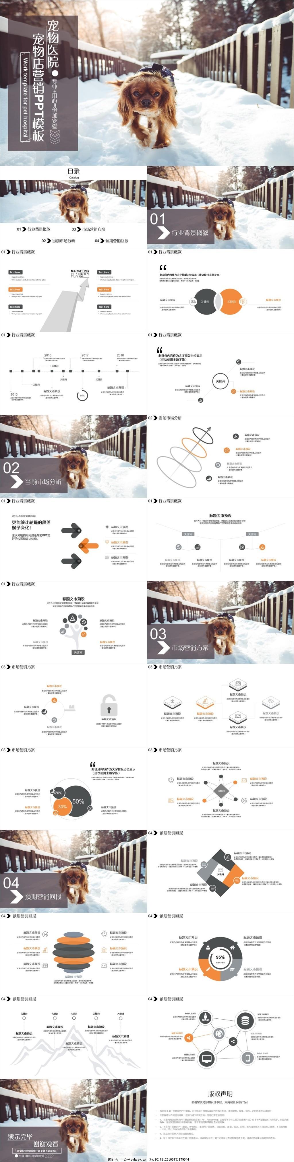 灰橙双色精致宠物店营销PPT模板,宠物狗,宠物寄养,宠物加盟,宠物美容,宠物饲养,宠物网店